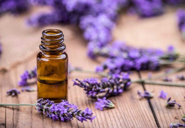 Lavendelöl zu Hause und in der Aromatherapie. Wie bereiten Sie das Lavendelöl vor?